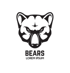 Bear head isolated on white background Sport team vector