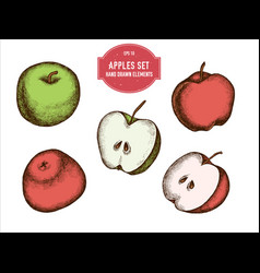 collection of hand drawn colored apples vector image