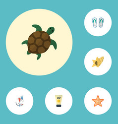 flat icons sea star slippers anti-sun cream and vector image