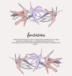 flower lines with tender violet orange vector image