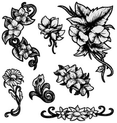 Flowers - Hand Drawn vector image
