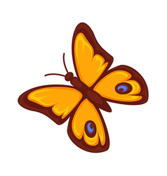 Orange butterfly isolated on white background vector