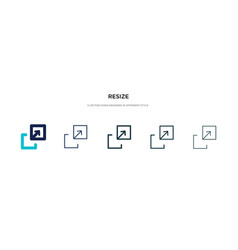 Resize icon in different style two colored and vector