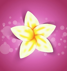 Spring yellow flower with shadow effect vector