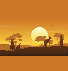 kangaroo on the hill scenery silhouettes vector image vector image