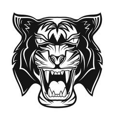 tiger 0012 vector image