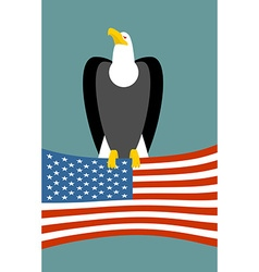 Bald eagle and American flag USA national symbol vector image
