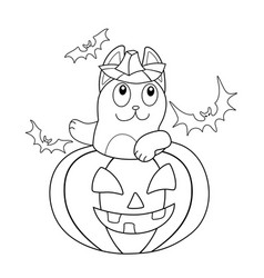 Cat is celebrating halloween - linear vector