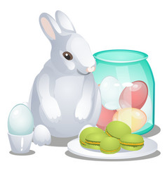 easter bunny colorful eggs and macaroni cakes vector image