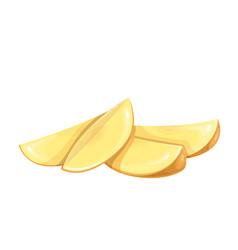 Potato slices vector