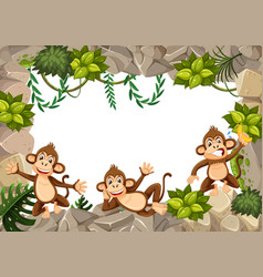 a monkey in wild boarder vector image