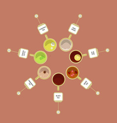 Different kinds of tea vector