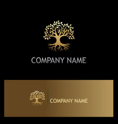 Gold oak tree botany eco logo vector