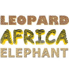 leopard zebra and elephant texture in text vector image