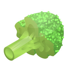 Raw broccoli icon isometric style vector