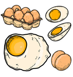 set chicken eggs in engraving style design vector image