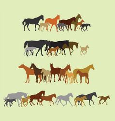 Set of isolated horses and foals silhouettes vector