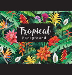 background from tropical flowers vector image vector image