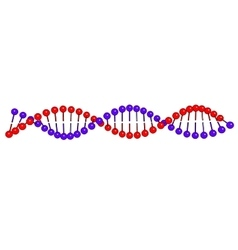 DNA molecule on white background image vector image vector image