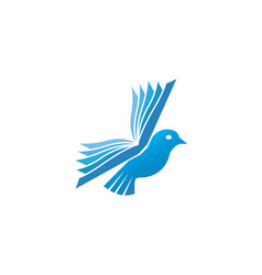 dove bird fly with wings book for logo design vector image