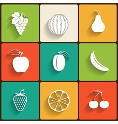 fruits flat icon set vector image