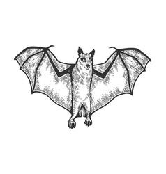 rousettus flying dog fox sketch vector image