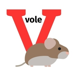English animals zoo alphabet letter V vector image