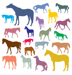 set of colorful horses silhouettes vector image vector image