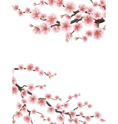 Spring background with cherry blossom EPS 10 vector image vector image