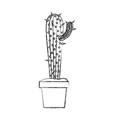blurred silhouette cactus with small branch in pot vector image vector image