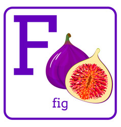 An alphabet with cute fruits letter f fig vector
