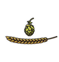 beer hop cone and barley or wheat ear icons vector image
