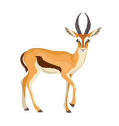 Gazelle or antelope with horn african mammal vector