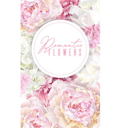 peony pink banner vector image