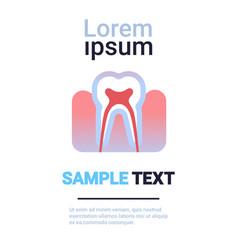 Tooth icon human organ anatomy healthcare medical vector