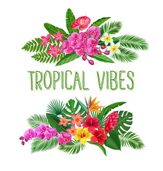 tropical banners exotic flower and leaves vector image