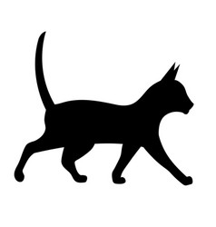 black silhouette of a walking cat vector image vector image