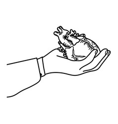 hand holding a human heart outline vector image