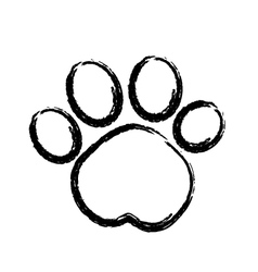 Paw print logo vector image vector image