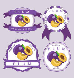 the theme plum vector image