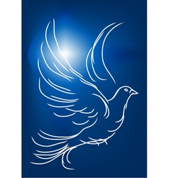 White dove in a blue sky vector