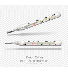 term vsmedical thermometer isolated object vector image