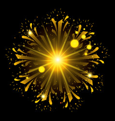 Fireworks bursting in shape of flower with yellow vector