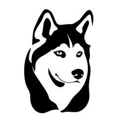 portrait of a dog of the husky vector image