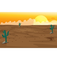 A desert vector