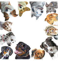 Group of dogs different breeds in square isolated vector