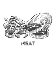 hand drawn steak ribs fresh meat isolated on vector image