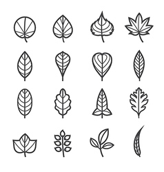 Leafs Icons for Pattern vector image