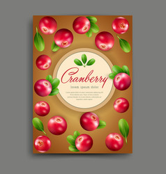 lliustration with realistic cranberry isolated vector image