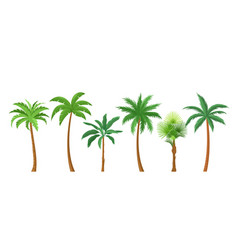 palm trees flat color set vector image